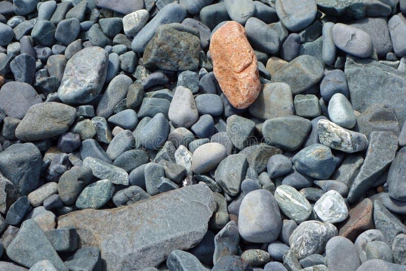 Skalistej plaży tło zdjęcia royalty free