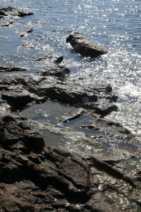 Skalisty brzeg Adriatycki morze fotografia stock