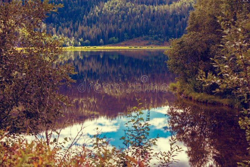 Skalisty brzeg halny jezioro obraz stock
