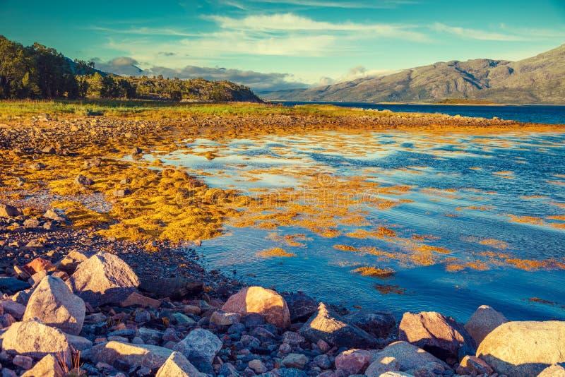 Skalisty brzeg halny jezioro w jesień ranku zdjęcia stock