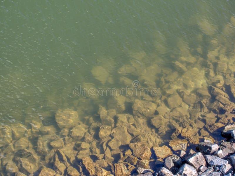 Skalisty brzeg zielona rzeka z małą rybą obraz royalty free