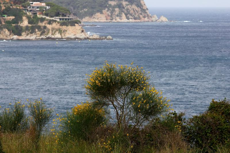Skalisty brzegowy Lloret De Mar, Hiszpania zdjęcie royalty free