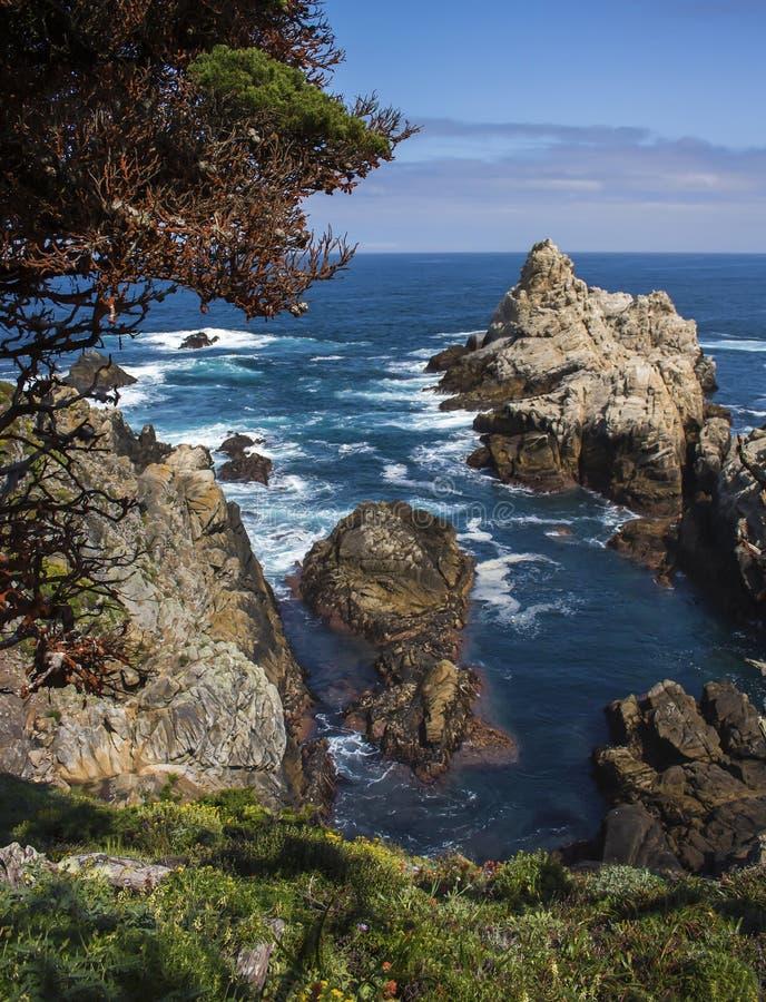 Skalisty cypel w Błękitnego morze z Cyprysowymi drzewami i wiosną Kwitnie w Kalifornia obraz royalty free