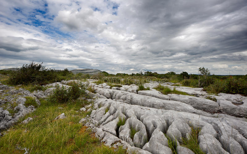 Skalisty krajobraz Burren w okręgu administracyjnym Clare, Irlandia zdjęcie stock