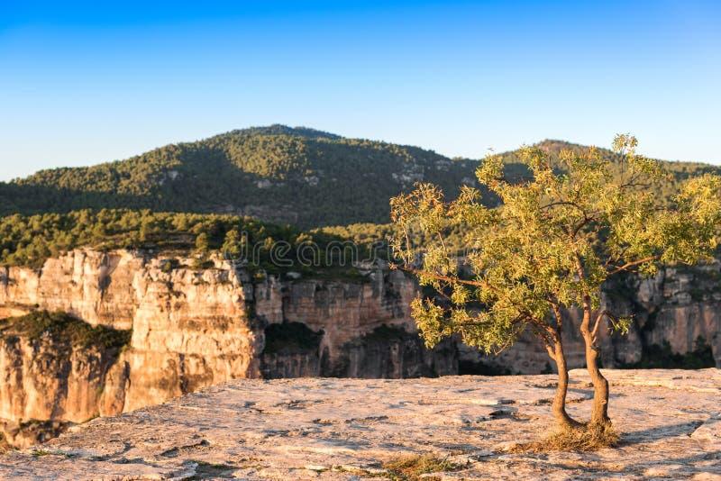 Skalisty krajobraz w Siurana De Prades, Tarragona, Hiszpania Odbitkowa przestrzeń dla teksta obraz stock