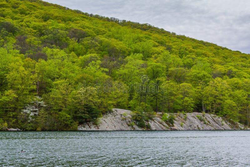 Skalisty krajobraz wzd?u? Heskiego jeziora przy Nied?wiadkowym Halnym stanu parkiem, Nowy Jork zdjęcie stock