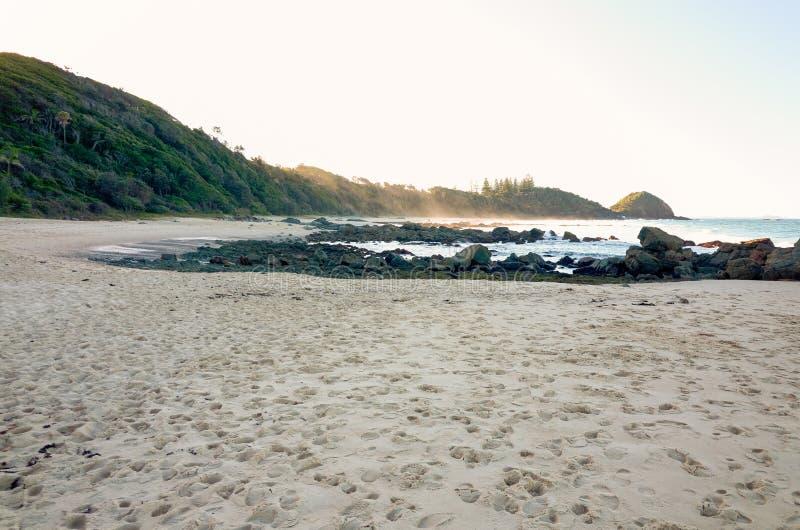 Skalisty seashore na Shelly plaży przy Portowym Macquarie Australia fotografia royalty free