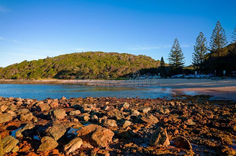 Skalisty seashore na Shelly plaży przy Portowym Macquarie Australia zdjęcie royalty free