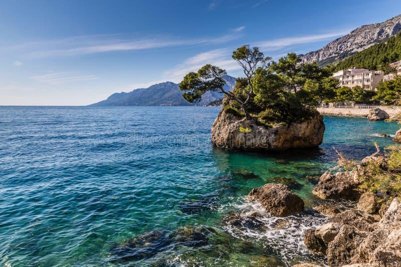 Skalisty seashore Riviera, Dalmatia, Chorwacja obraz royalty free