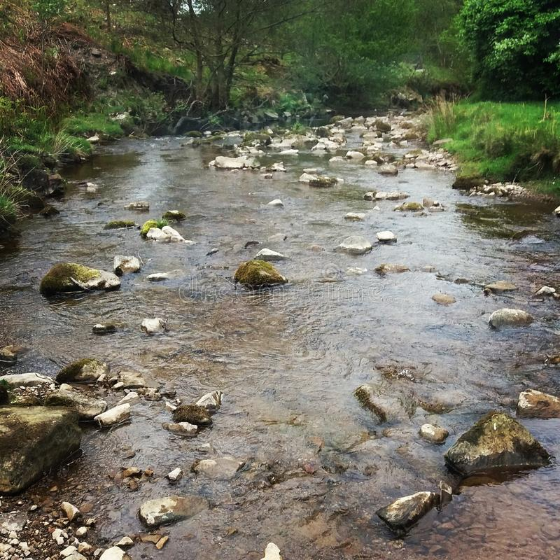 Skalisty strumień w hurst północny Yorkshire obrazy stock