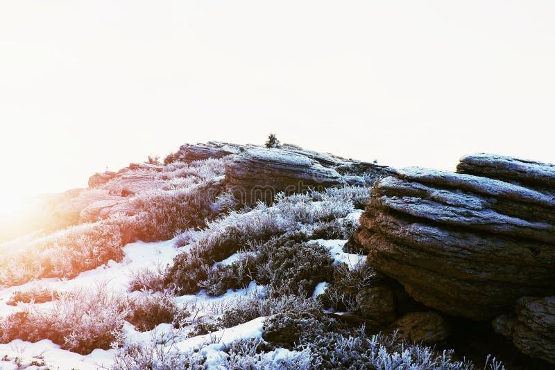 Skalisty szczyt Alps halni w pogodnym zima dniu Zamarznięta borówka i skała pod świeżym hoarfrost zdjęcie royalty free