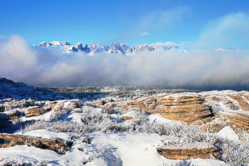 Skalisty szczyt Alps halni w pogodnym zima dniu Zamarznięta borówka i skała pod świeżym hoarfrost obrazy royalty free