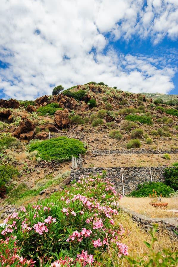 Skalisty tarasowy brzeg Alicudi wyspa zdjęcia stock