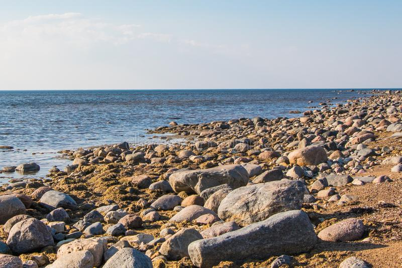Skalisty wybrze?e w Kabel, morze ba?tyckie, Estonia zdjęcia stock