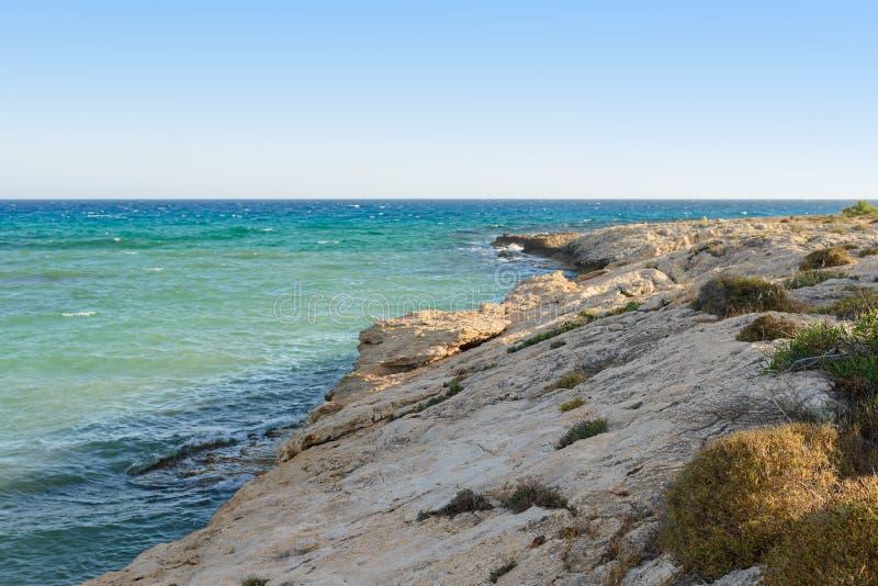 skalisty wybrzeże z rzadkimi roślinami zdjęcie stock
