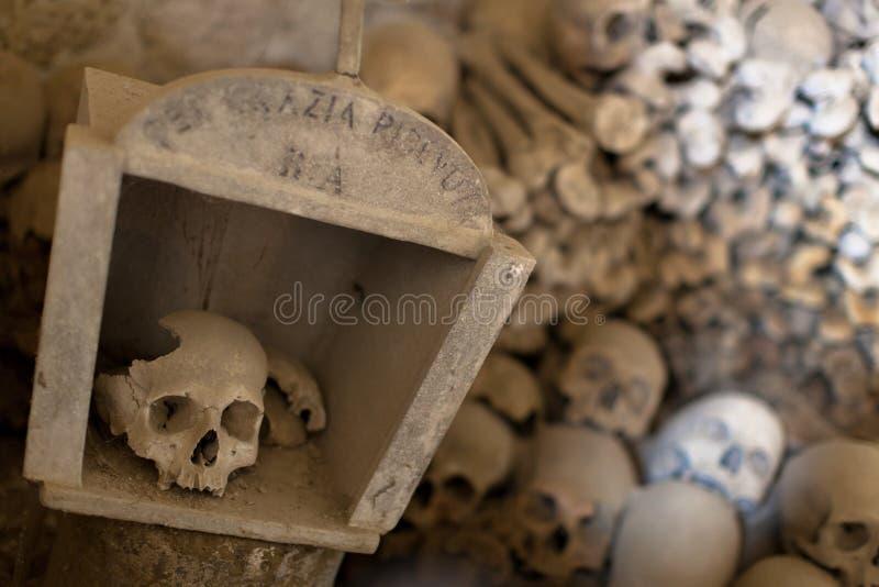 Skallar i den Fontanel kyrkogården arkivfoto