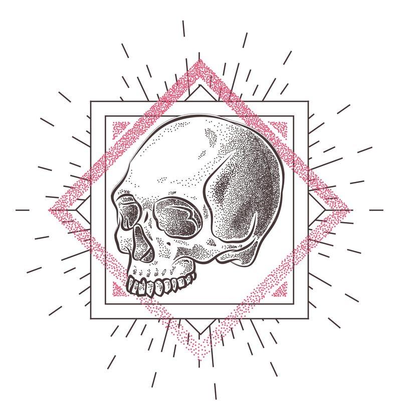 Skalle med geometriska abstrakta beståndsdelar illustratören för illustrationen för handen för borstekol gör teckningen tecknade  vektor illustrationer