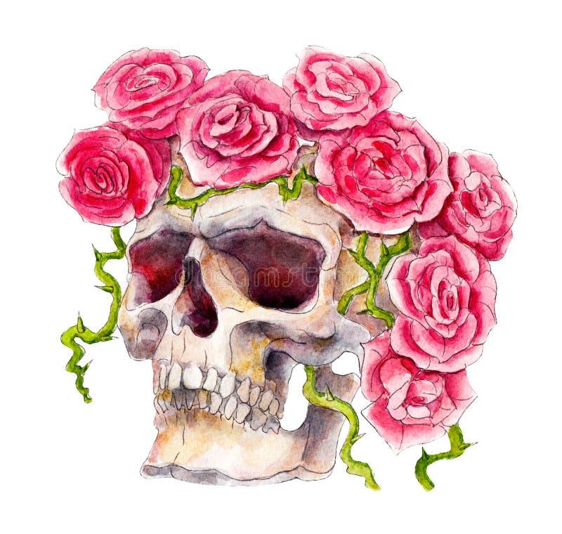 Skalle med rosor, allhelgonaaftonvattenfärgillustration, isolerade objekt på vit stock illustrationer