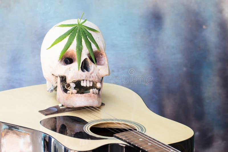 Skalle på gitarr- och gräsplancannabisbladet royaltyfri bild