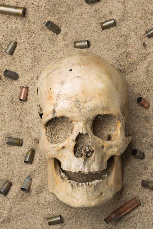 Skalle som ligger i sanden, spritt gevär royaltyfri bild