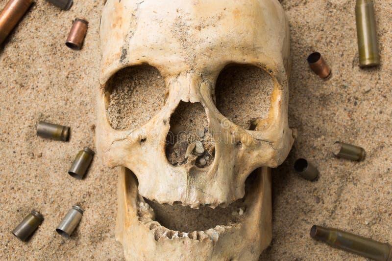 Skalle som ligger i sanden, spritt gevär royaltyfria foton