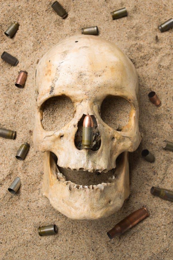 Skalle som ligger i sanden, spritt gevär arkivbilder