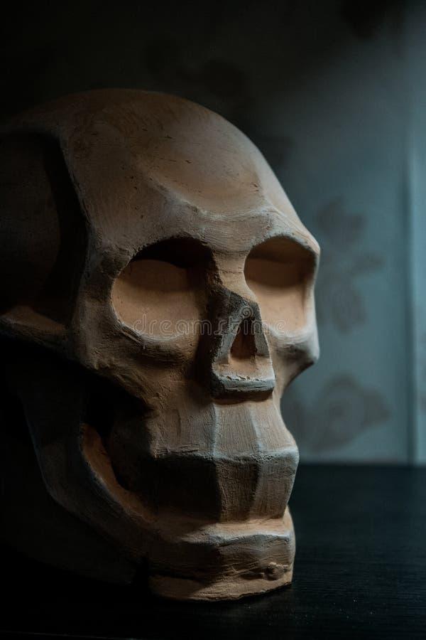 Skalleorientering för att dra och att modellera med lera arkivfoto