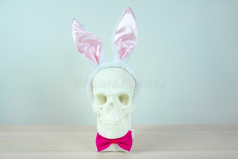 Skalleskulptur med kaninörahuvudbindlar och en rosa fluga r Fritt utrymme för design royaltyfri bild