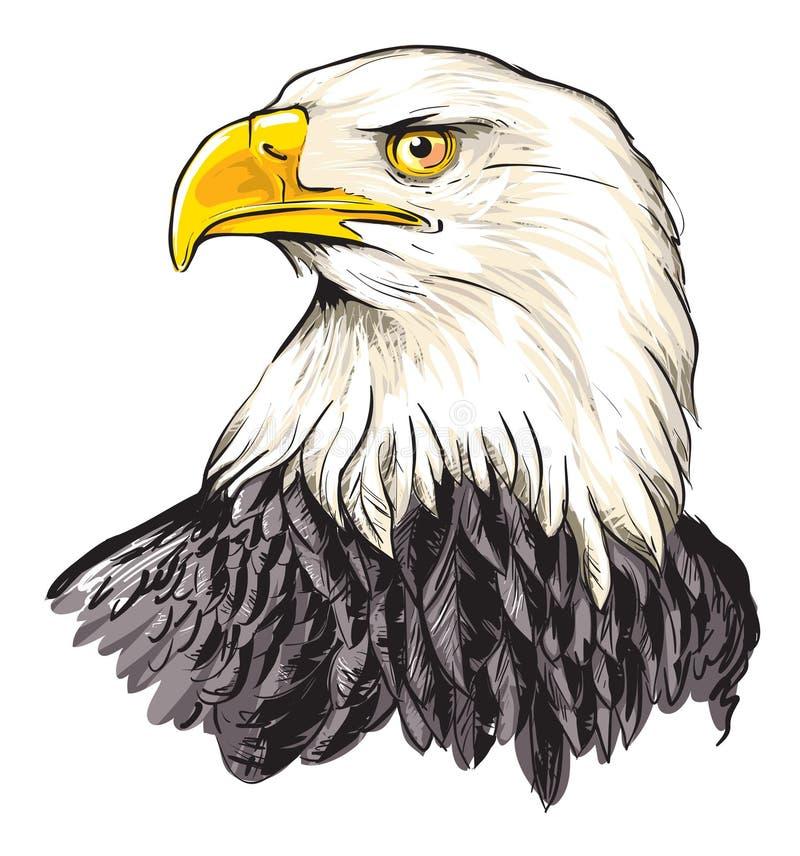 skallig örn royaltyfri illustrationer