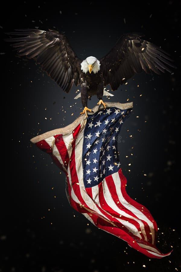 Skalliga Eagle flyg med amerikanska flaggan stock illustrationer