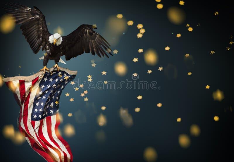 Skalliga Eagle flyg med amerikanska flaggan royaltyfri foto