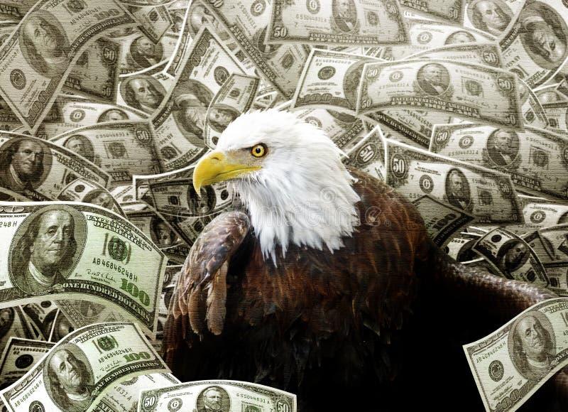 Skalliga Eagle i pengar arkivfoto