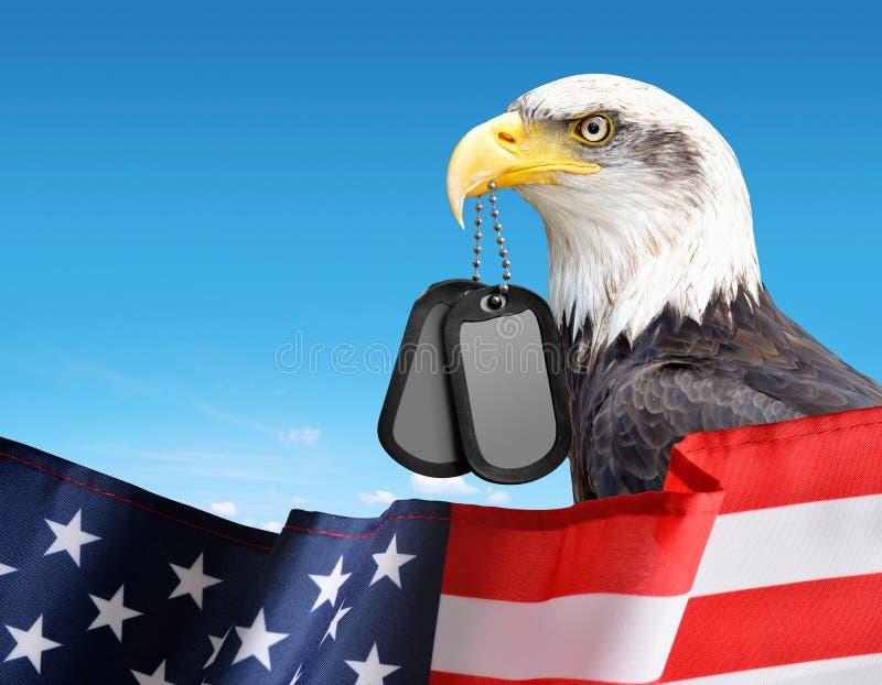 Skalliga Eagle rymmer etiketter för en hund i hans näbb I förgrunden en amerikanska flaggan royaltyfria foton