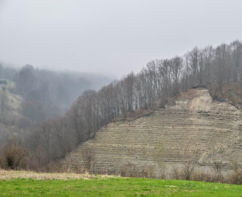 Skalliga träd på vaggar Lynnigt landskap av den tidiga våren royaltyfria bilder