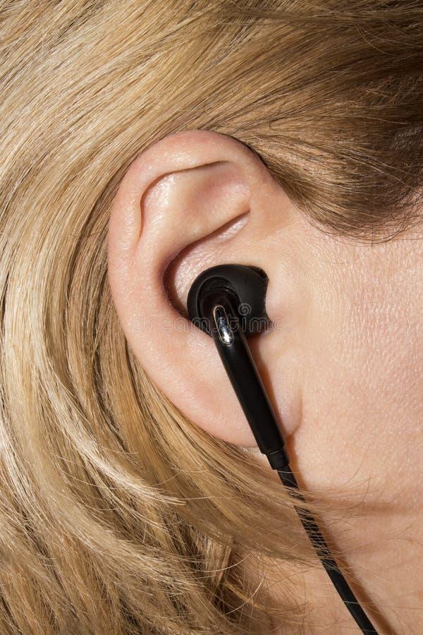 Skalm i det mänskliga örat royaltyfri bild