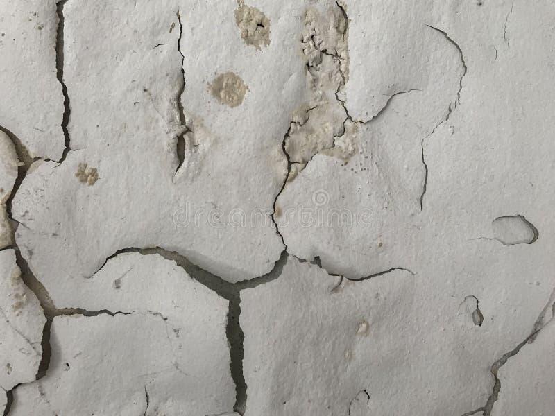 Skalning som målas som mänsklig framsida på väggbakgrund royaltyfria bilder
