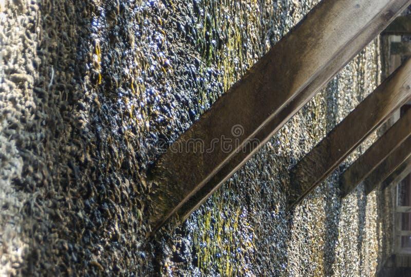 Skalowanie dom, drewniana budowa i cierń ściana tarnina, wiążemy na czym ciec puszek i wyparowywa brine i obrazy royalty free