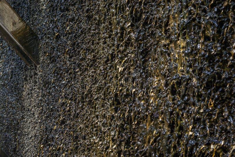 Skalowanie dom, drewniana budowa i cierń ściana tarnina, wiążemy na czym ciec puszek i wyparowywa brine i zdjęcia stock