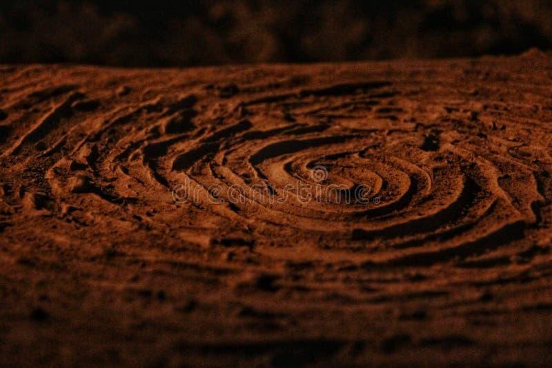 Skamielina z wzrostowym pierścionkiem obrazy stock