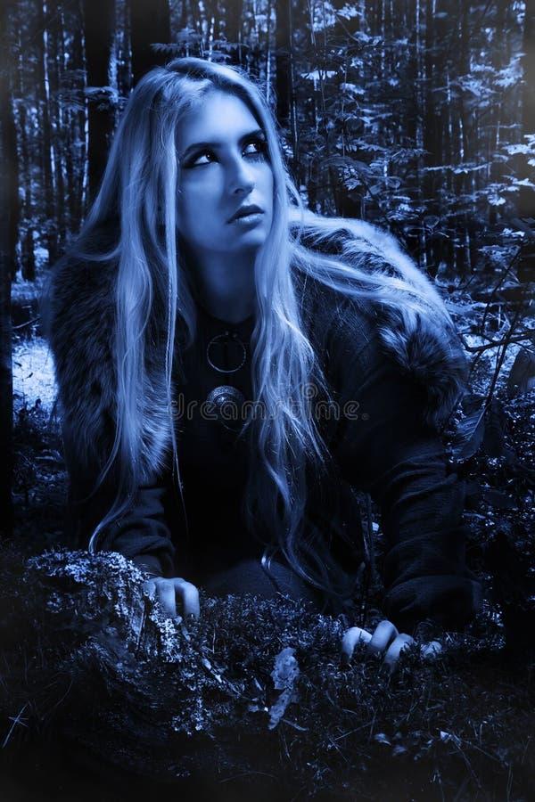 Skandinavisch meisje in het nachtbos stock foto