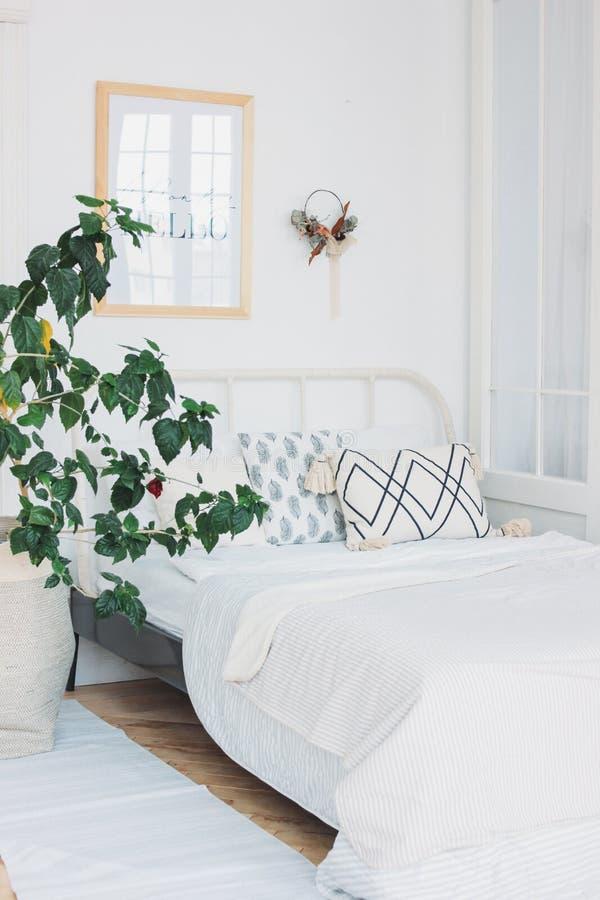 Skandinavisch modern comfortabel eco wit binnenland in slaapkamer, grote groene huisinstallatie, minimalism stock foto