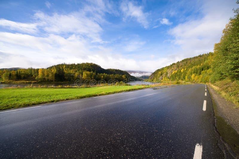 Skandinavische Straße stockbild
