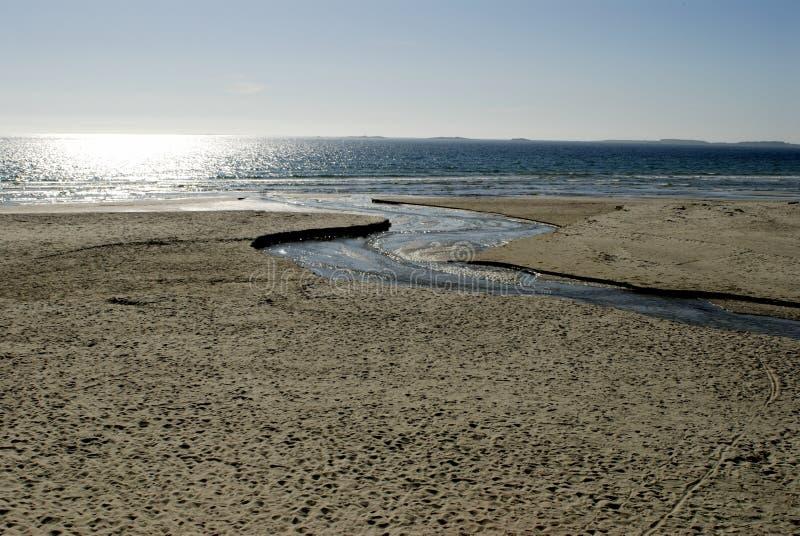 Skandinavischer Sandstrand stockbild