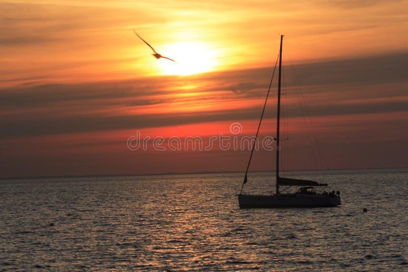Skandinavischer Sonnenuntergang stockfotografie