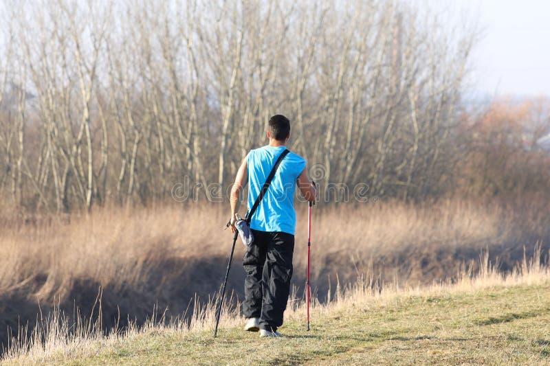 Skandinavisches nordisches Gehen Ein Mann in der Sportkleidung schlendern durch das Gras des Frühlinges s in den Strahlen des Son lizenzfreie stockbilder