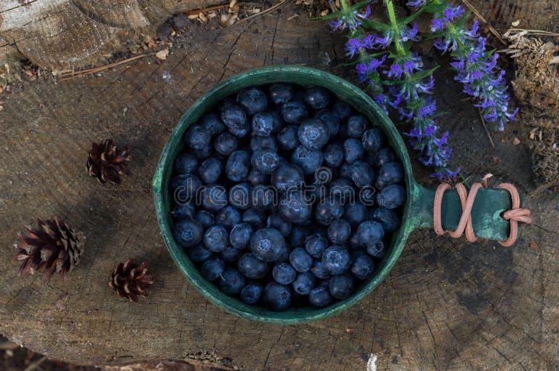 Skandinavisk bunke och blåbär B?r och blommor 1 livstid fortfarande arkivbilder