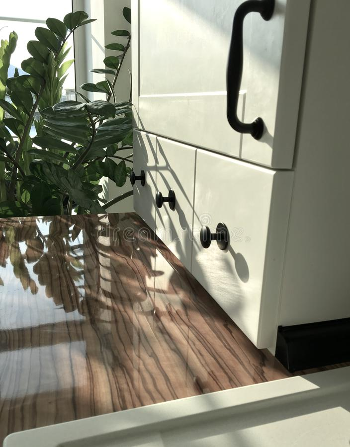 skandinavisk stil för vitt lakoniskt kök med en mosaik på golvet och ett svart klapp och växter i inre royaltyfria foton