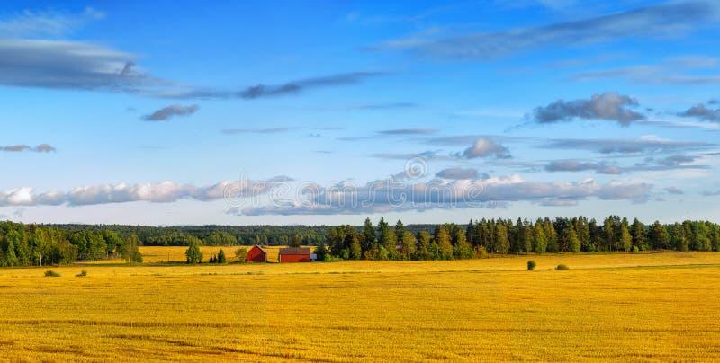Skandynawski banatka krajobraz zdjęcia stock