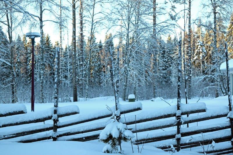 Skandynawski tradycyjny drewniany ogrodzenie w zimie, drzewa zakrywający z śniegiem, latarnia uliczna, mnóstwo śnieg, Szwecja zdjęcie stock