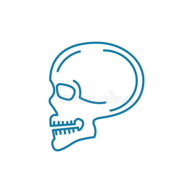 Skanerowanie czaszki ikony liniowy pojęcie Skanerowanie czaszki linii wektoru znak, symbol, ilustracja royalty ilustracja